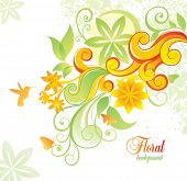 Floral background with colibri and butterfly.