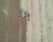 Combine Harvester Transferring Grain To Truck Trailer, Aerial View Of Harvest. poster