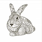 Coloring, Coloring Page, Bunny, Rabbit, Rodent, Pattern, Vector poster