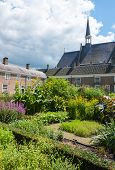 Colorful Garden In A Dutch Beguinage