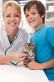 Boy and his kitten at the veterinary doctor office-focus on the cat