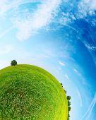Parte de un panorama esférico de un prado verde con árboles y cielo azul