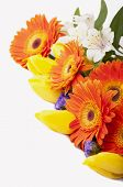 beautiful bouquet of colorful spring flowers. tulip, ranunculus,