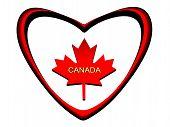 Maple Leaf, Symbol Of Canada.