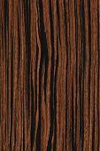 Ebony (wood Texture)