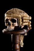 Antique horsehair judge's wig on a creepy old skull