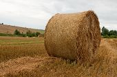 Stack Of Straw On A Field