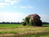 foto of tobacco barn  - Old tobacco barn in the middle of a field