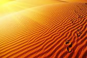 Footprints on sand dune, Sahara Desert, Algeria