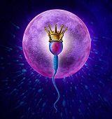 Winning Sperm