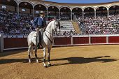Spanish bullfighter on horseback Pablo Hermoso de Mendoza Starting the pase�llo to begin the celeb