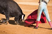 stock photo of bullfighting  - Bullfighter with the Cape in the Bullfight - JPG