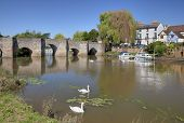 picture of avon  - The River Avon at Bidford - JPG