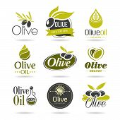 stock photo of oil can  - Olives and olive oil can be used in jobs related icons - JPG