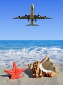Landing an aircraft on a tropical island. In the foreground, shell and starfish.
