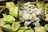 Pebbles And Petals