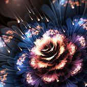 Orange-blue Fractal Flower