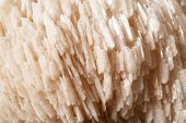 Baryte Mineral Stone