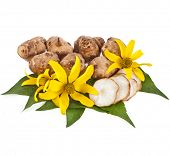 picture of jerusalem artichokes  - Jerusalem artichoke with flower and leaves stem isolated on a white background - JPG