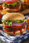 pic of veggie burger  - Homemade Healthy Vegetarian Quinoa Burger with Lettuce and Tomato - JPG