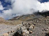 Trekking Pole In High Himalayan Landscape In Monsoon