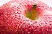 Water drops on ripe red apple