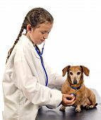 Young Veterinarian In The Making
