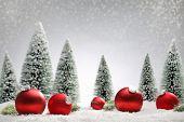 Red Christmas balls and fir tree on snow