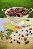 Berries from garden