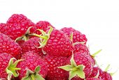 raspberry closeup isolated on white background