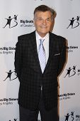LOS ANGELES - OCT 24:  Fred Willard at the Big Brothers Big Sisters Big Bash at the Beverly Hilton Hotel on October 24, 2014 in Beverly Hills, CA