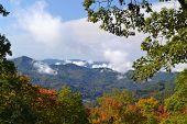 Appalachian Mountain Scene-01