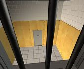 Padded Cell In A Mental Hospital