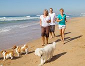 pic of mature men  - a fit family jogging on the beach with their three pet dogs - JPG