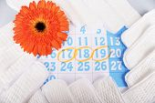 stock photo of menses  - Sanitary pads - JPG