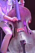 Young man playing the contrabass