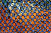 Blue And Orange Net