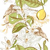 Floral Seamless Pattern With Hand Drawn Lemon Flowers And Humming Birds