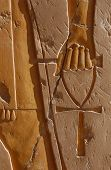 Ankh - symbol of Life