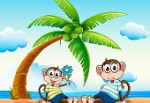 illustration of two monkeys sitting on the beach
