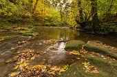 River Blyth In Autumn