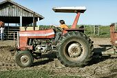 Hercul�?�¢ndia, SP, Brazil - Abr 30, 2006. A normal day at a farm with workers driving a tractor to a barn to feed animals.