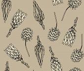Vintage floral seamless pattern, vector illustration