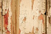 wood grungy background with space for your design