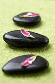 Black massage stones with flower petals and water drops