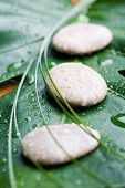 Stones on green leaf with water drops