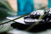 Black massage stones with water drops