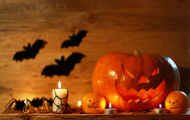 stock photo of bat  - Picture of halloween holiday background carved glowing pumpkin and black bat in dark night jack - JPG