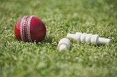 picture of cricket ball  - Close - JPG
