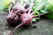foto of turnip greens  - Fresh red beet on the wooden board - JPG